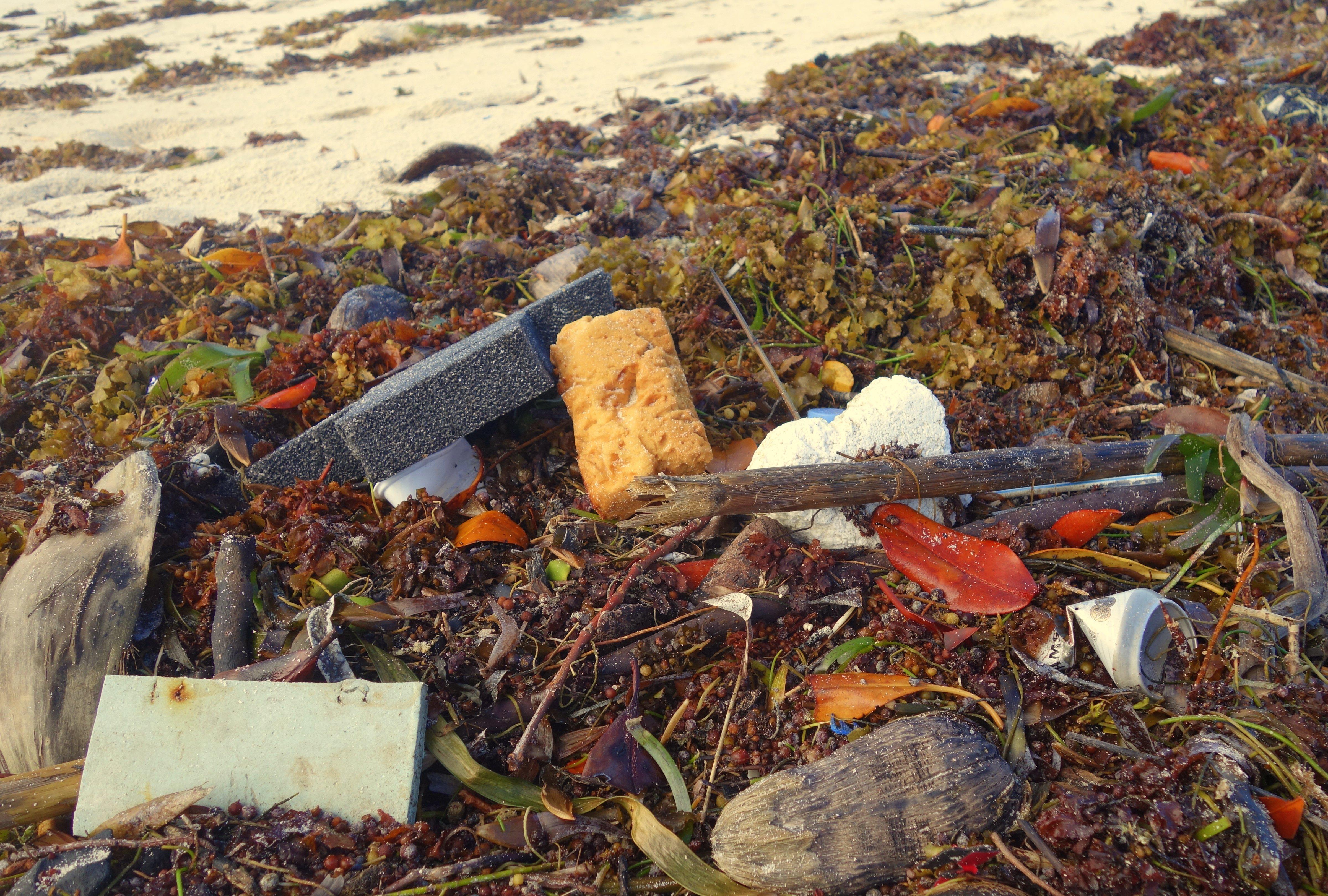 Do a beach clean